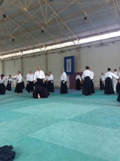REA AIKIDO IAIDO MUTOKUKAI FEI FEJ RYUSHIN_4697